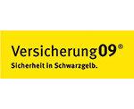 Versicherung für BVB-Fans Schnelltest