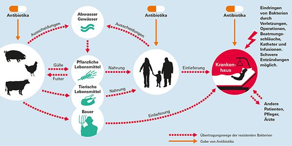 Wann fosfomycin es aristo 3000 mg wirkt Wann wirkt