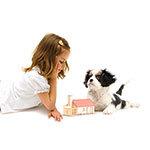 Haustier fürs Kind Special