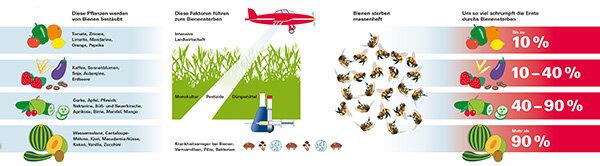 Folgen Des Bienensterbens