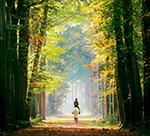 Regeln im Wald: Was im Wald erlaubt ist